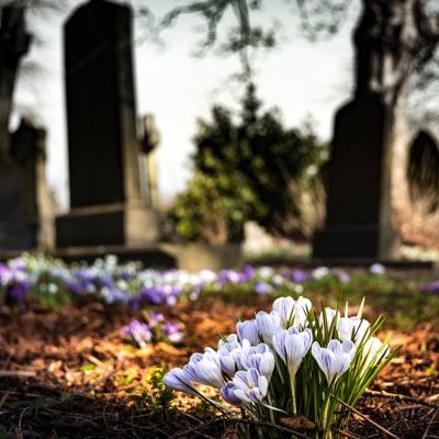 Image for Estate Litigation in Qualicum Beach, Graveyard with flowers